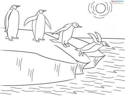 emperor penguin coloring sheet