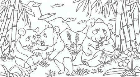 baby panda in the bamboo forest coloring page