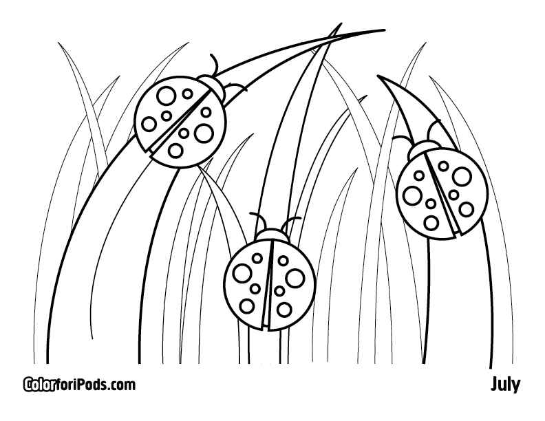 printable coloring pages of ladybugs