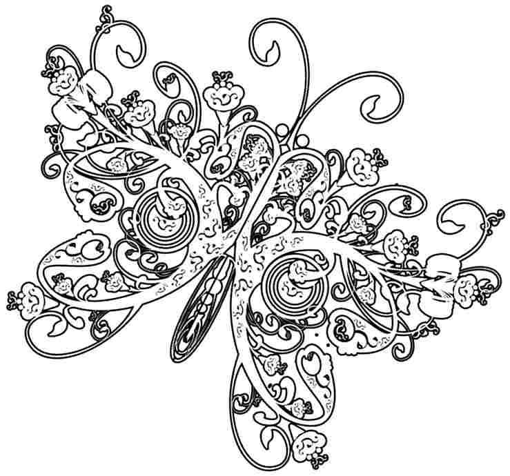 free printable coloring pages life cycle butterfly