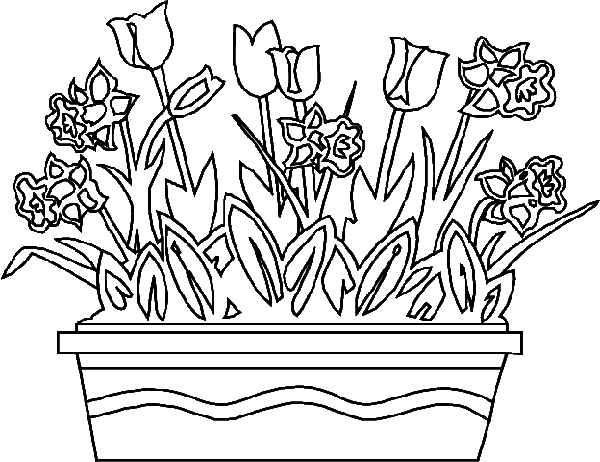 printable coloring pages of spring flowers
