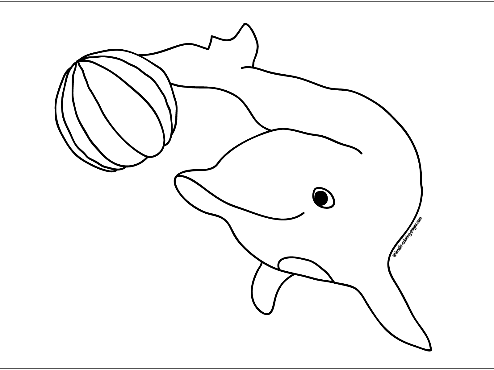 dolphin-play-ball-coloring-pages