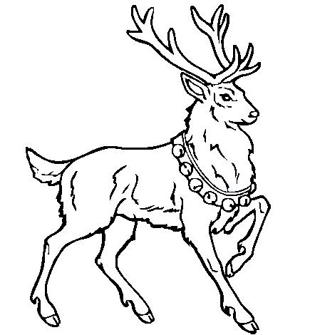 deer-coloring-pages-02