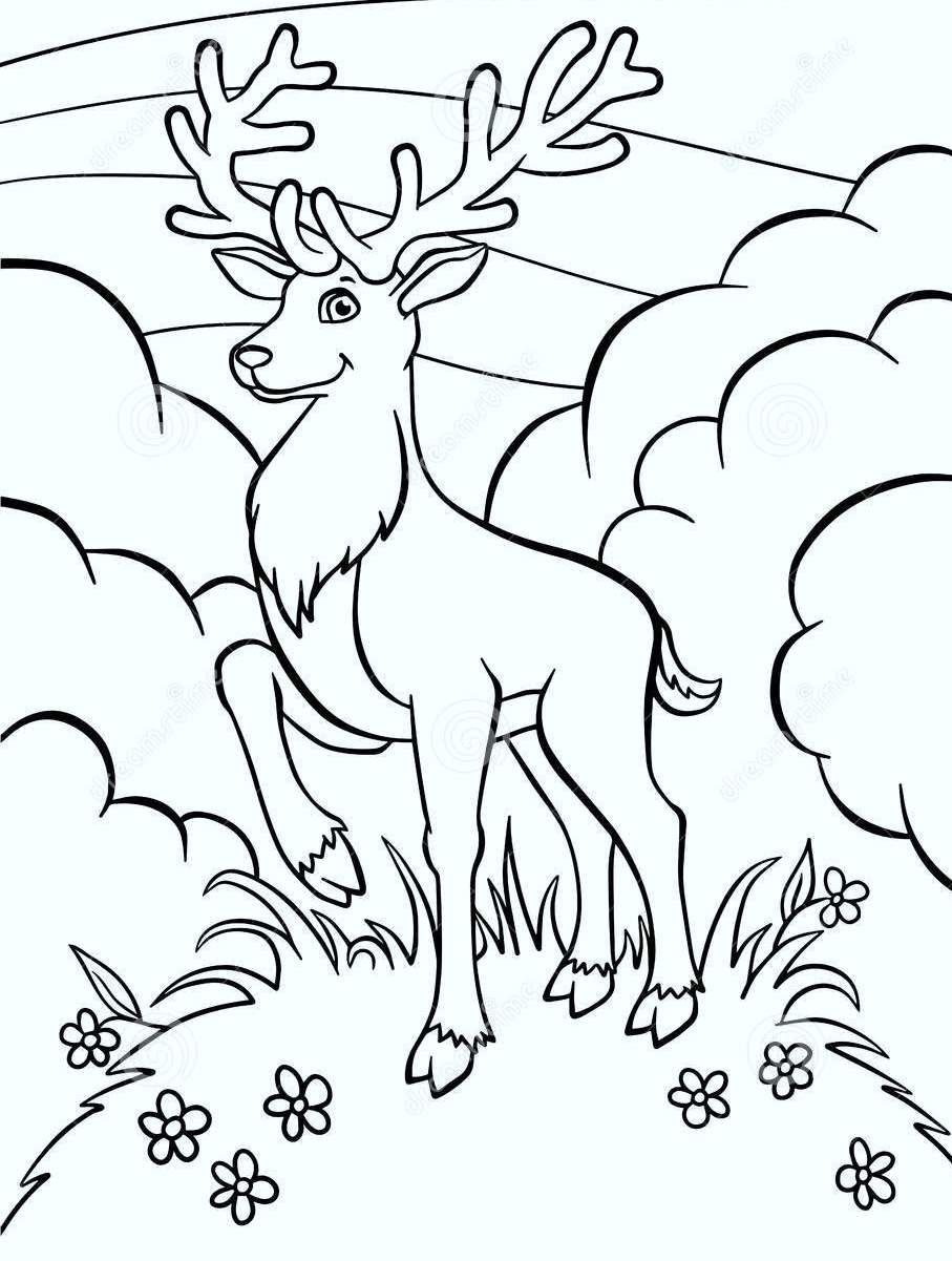 deer-coloring-pages-06