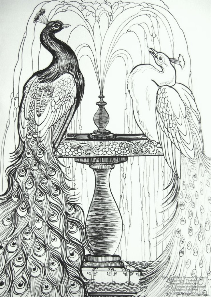 blue_and_white_peacocks_coloring_pages