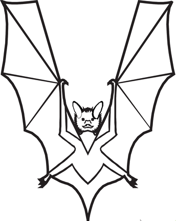 abc-animal-letter-coloring-pages