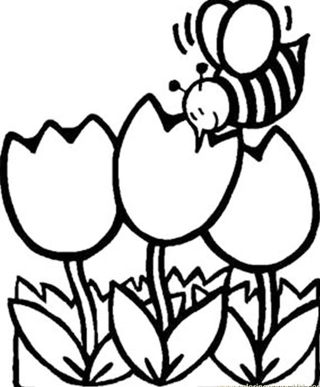 Busy_Bee_Coloring_Book