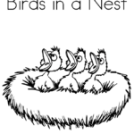 bird-babies-in-a-nest_coloring_Book