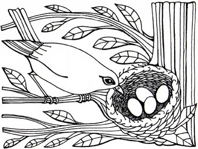 bird-nest-print-out-drawing