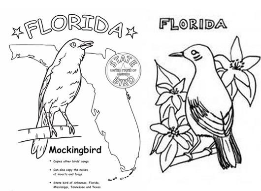 florida-mockingbird-symbol-coloring-page