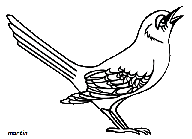 Florida Mockingbird Coloring Pages Click The Northern