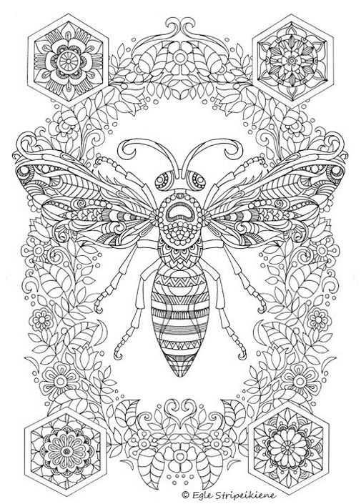 insect-bee-mandala-coloring-page