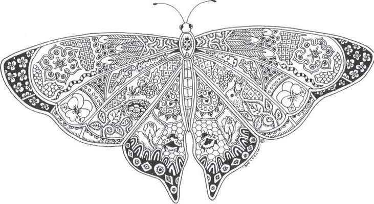 insect-butterfly-mandala-print-out