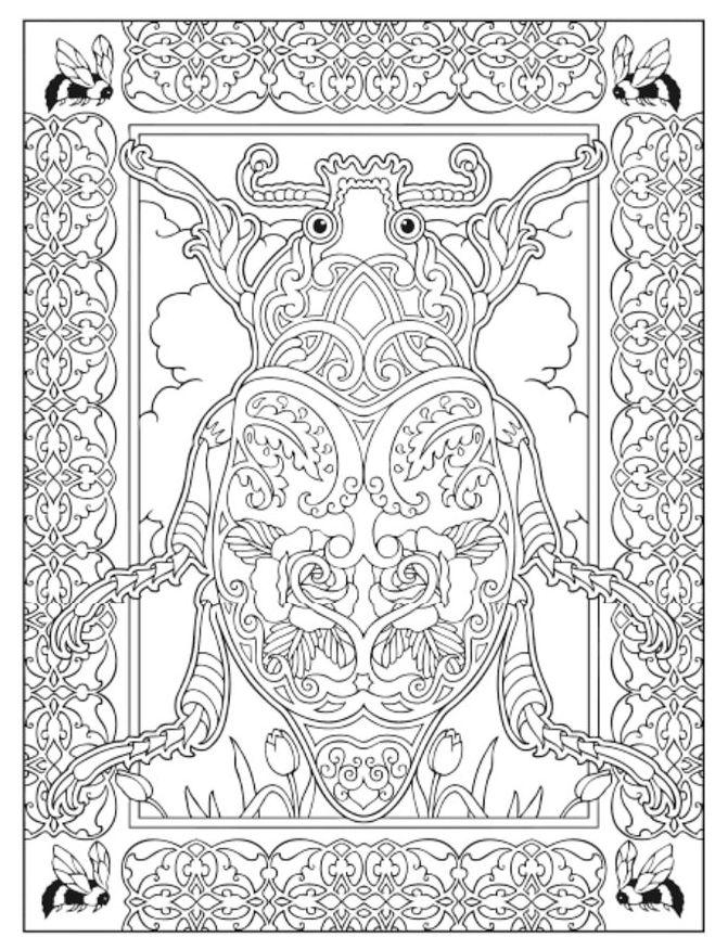 insect-mandala-colouring-sheet