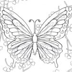 intricate-butterfly-coloring-pictures