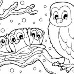 owl-in-Winter-coloring-books