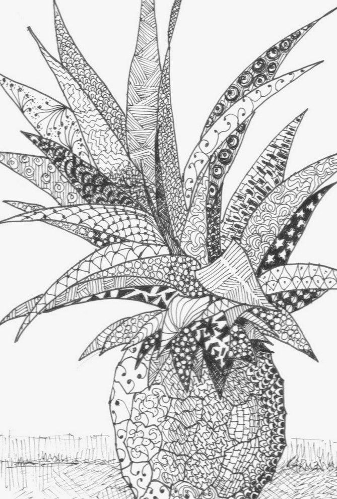 zen-art-pineapple-picture