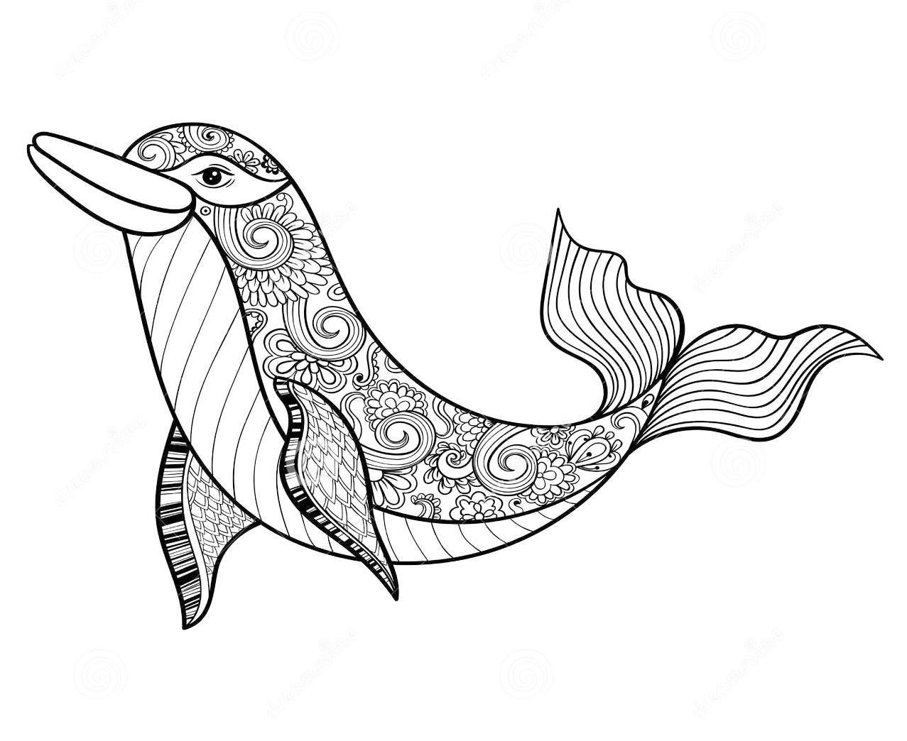 zentangle-dolphin-coloring-page-to-relieve-stress