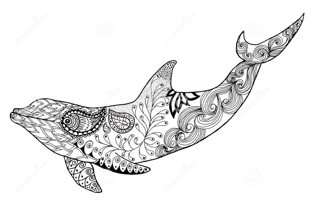 zentangle-dolphin-colouring-vector