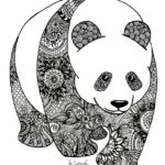 zentangle-panda-coloring-book