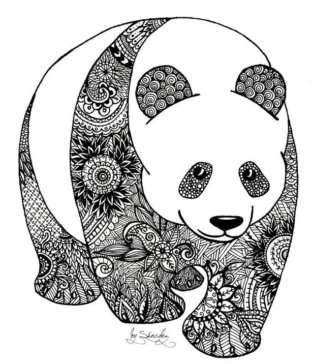 zentangle-panda-coloring-book