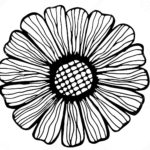 zentangle-sunflower-coloring-book