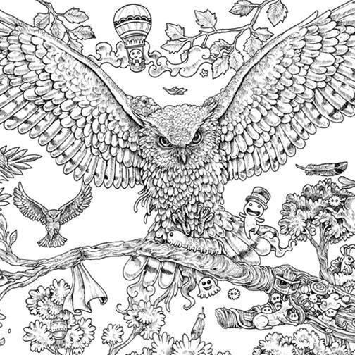 Animorphia Owl Coloring Book
