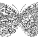 Mythomorphia-coloring-book-Kerby-Rosanes