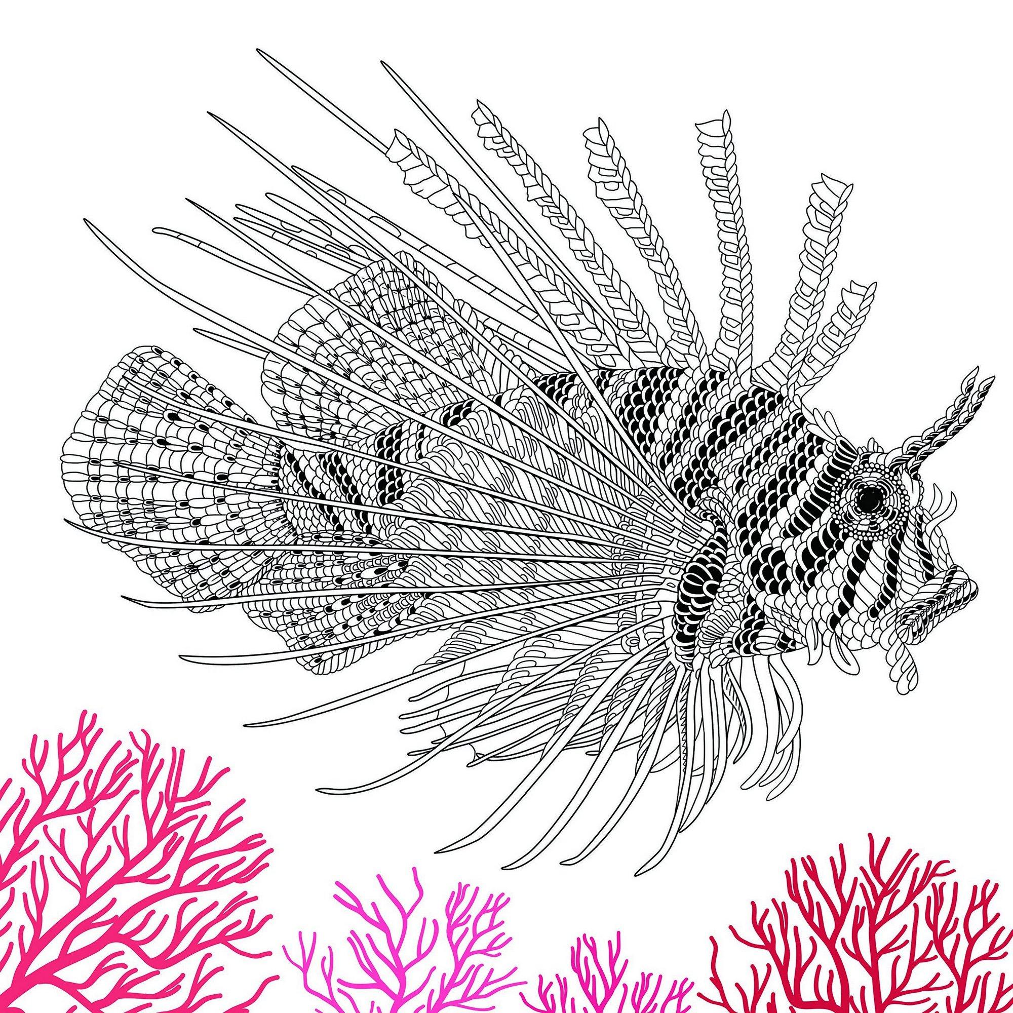 The-Aquarium-Marine-Portraits-Coloring-Book