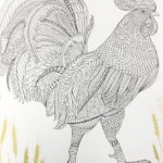 The-Aviary-Bird-Portraits-coloring-book-chicken