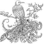 animorphia-coloring-sheet