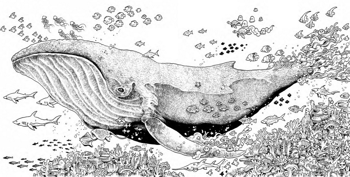 animorphia-ocean-coloring-book