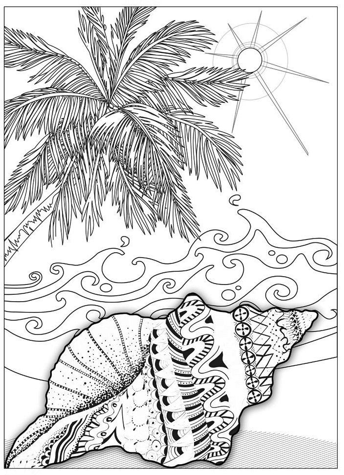at-beach-coloring-book-shells