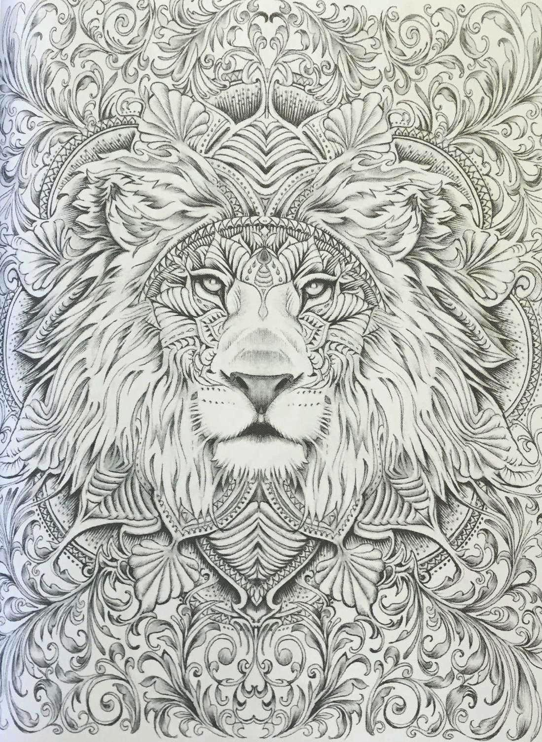 Colour My Sketchbook Coloring Book Lion