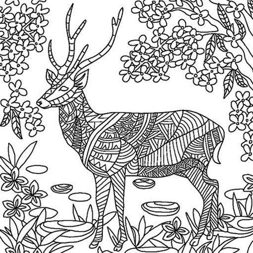 deer-mandala-colouring-picture