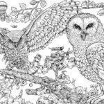 intricate-animorphia-coloring-book
