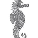 mandala-seahorse-coloring-picture