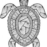 mandala-turtle-coloring-page