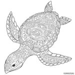 mandala-zentangle-turtle-coloring-page