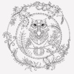 Owl Enchanted Forest coloring book
