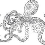 zentangle-octopus-drawing