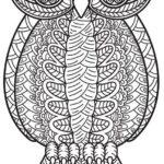 mandala-owl-coloring-picture