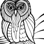 owl-mandala-coloring-book-for-adults