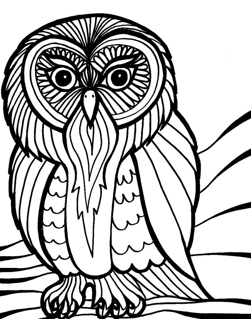 owl-mandala-coloring-book-for-adults
