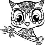 stunning-owl-mandala-coloring-sheet