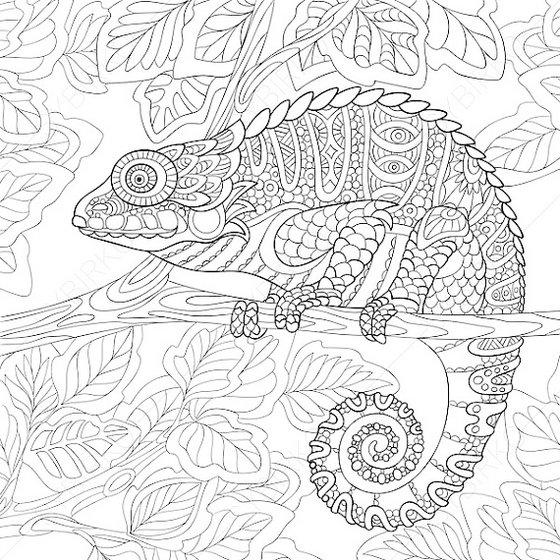 Animal Mandala Chameleon Art Coloring Pages