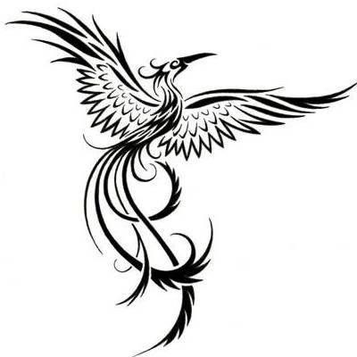 Phoenix Bird With Long Tail Coloring Page