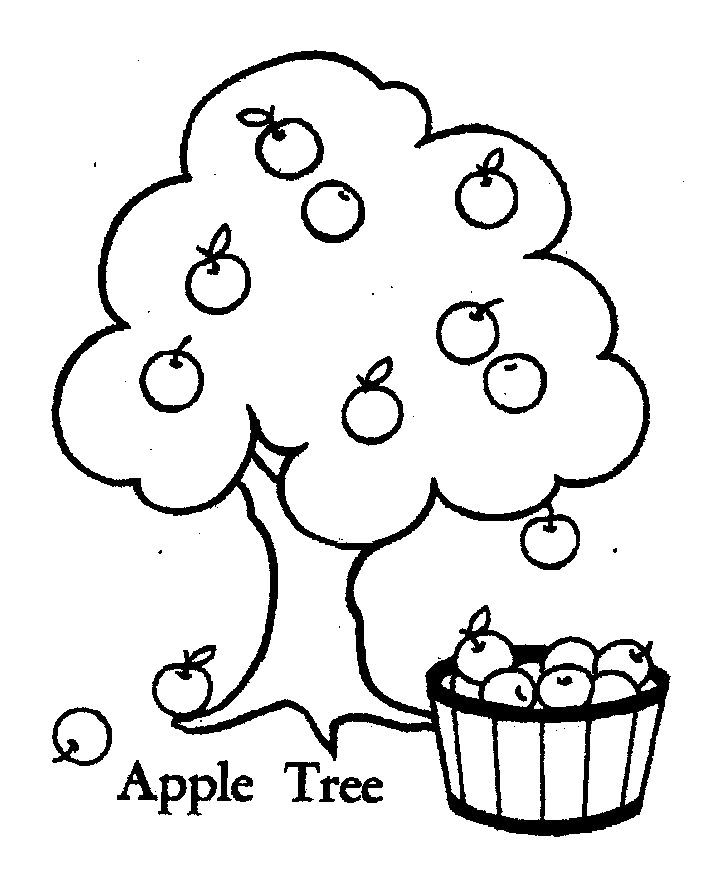 apple dumplin coloring page free printable coloring pages - 704×869