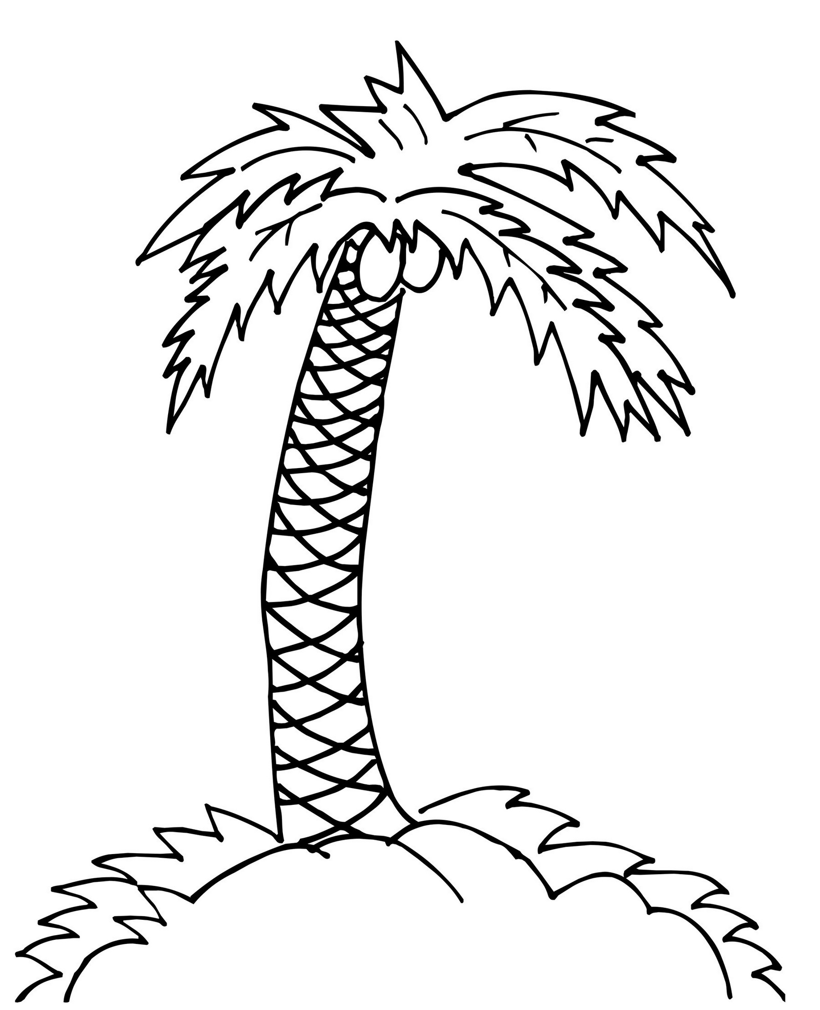 palm tree coloring and drawing page