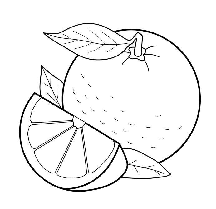 Citrus Printable Coloring Page
